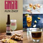 Gingerrr Romantic 0,33l 3,7%